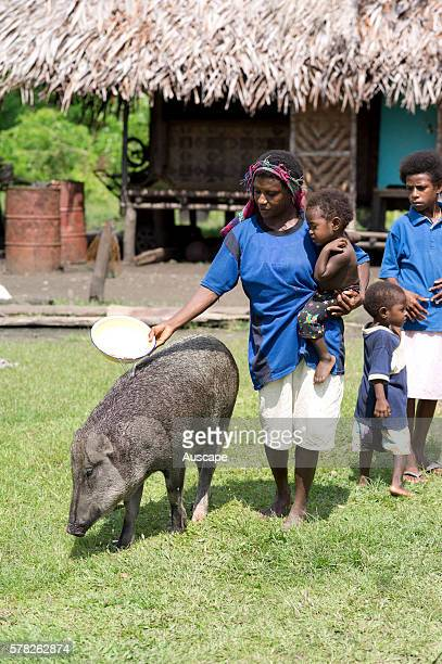 Woman with child on her hip with a pig Pigs are a measure of wealth Watam village East Sepik Province Papua New Guinea