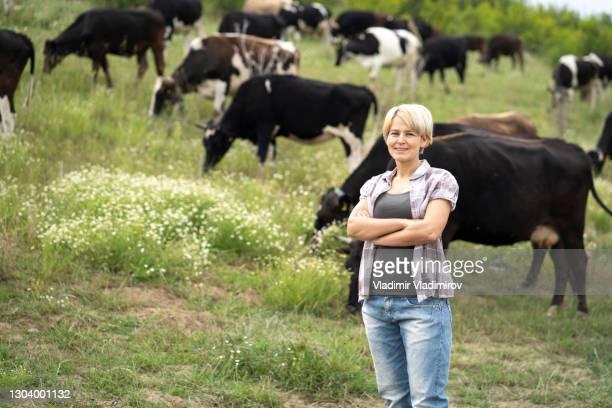 donna con le braccia incrociate in piedi davanti alla mandria di mucche - pascolo foto e immagini stock