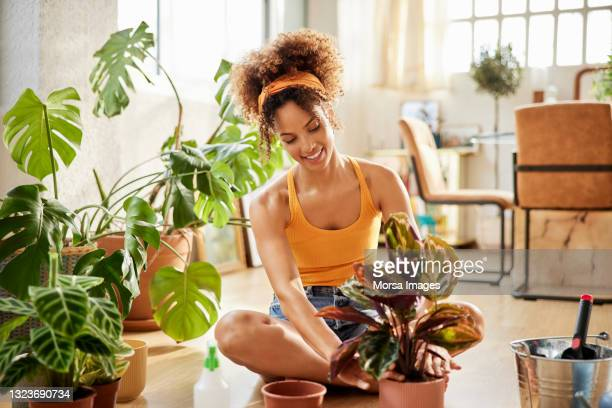 woman with curly hair planting in living room - hair band stock pictures, royalty-free photos & images