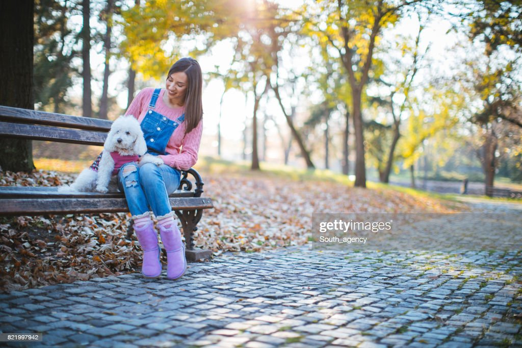 Woman with cute dog in park : Stock Photo