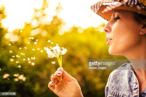 woman with dandelion - allergies stock photos and pictures