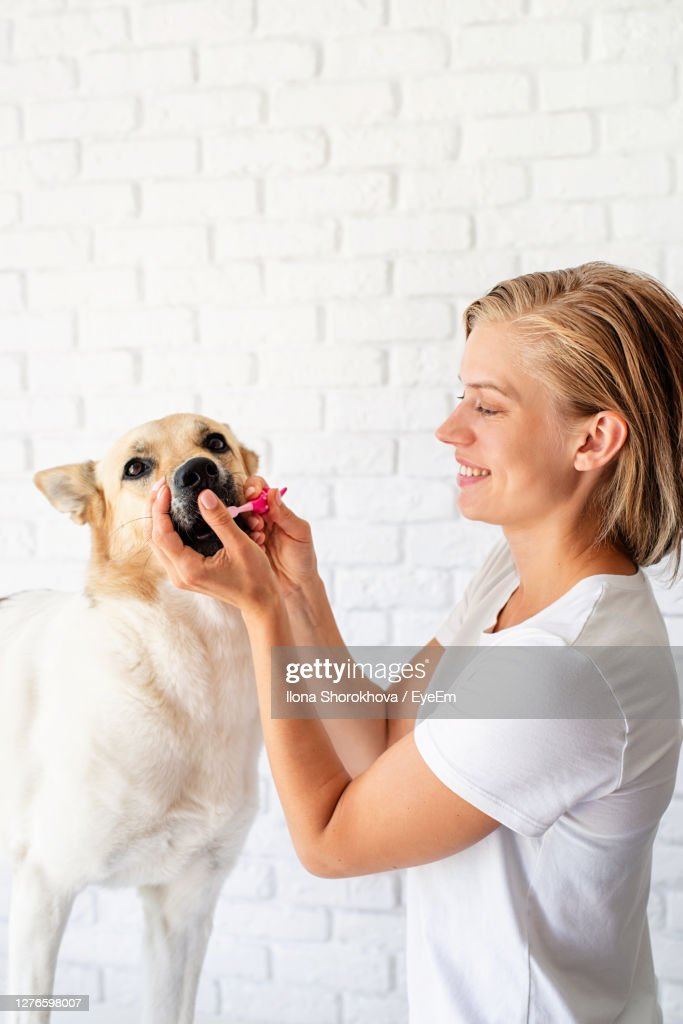 Woman With Dog Against Wall : Stockfoto