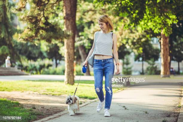 woman with dog in a park - pet leash stock pictures, royalty-free photos & images