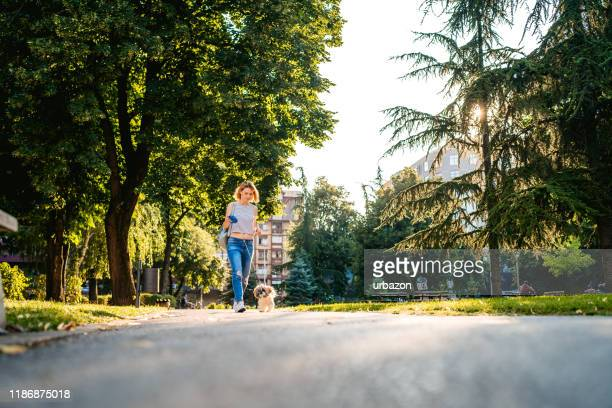 woman with dog in a park - lap dog stock pictures, royalty-free photos & images