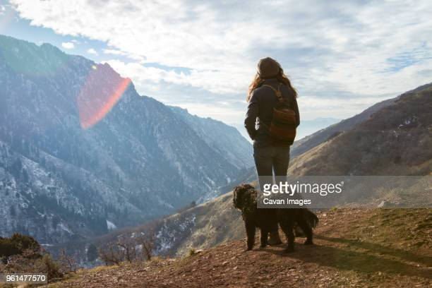 woman with dog looking at view while standing on mountain during winter - ソルトレイクシティ ストックフォトと画像