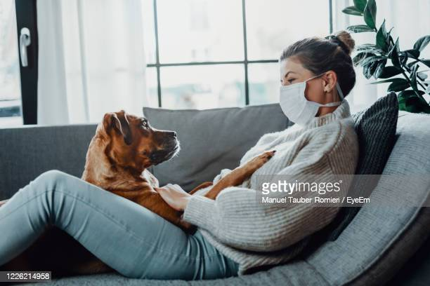 woman with dog on sofa at home - one mid adult woman only stock pictures, royalty-free photos & images