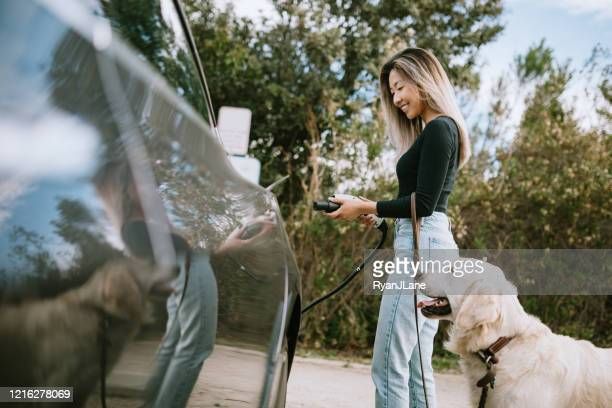 woman with dog plugs in electric vehicle to charge - electric car stock pictures, royalty-free photos & images
