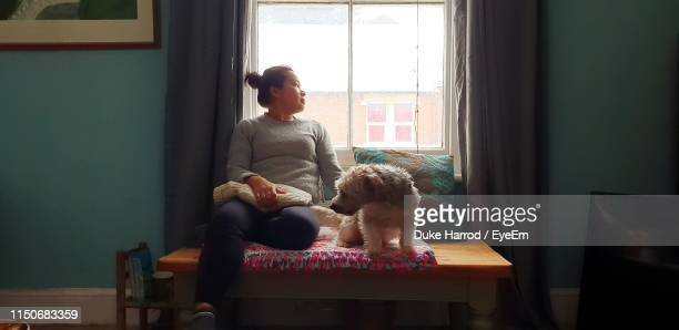 woman with dog sitting by window at home - duke stockfoto's en -beelden
