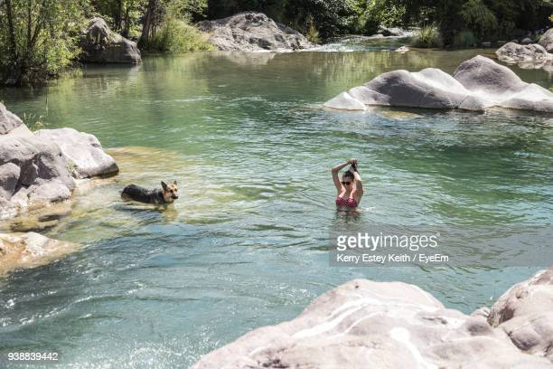 woman with dog swimming in lake at forest - kerry estey keith stock photos and pictures