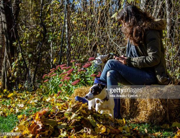 Woman With Dog Using Mobile Phone While Sitting On Hay By Chainlink Fence