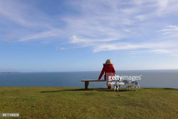 woman with dogs, sat on bench looking out to sea - luto fotografías e imágenes de stock