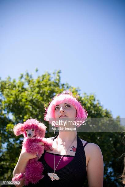 woman with dyed pink poodle - copying stock pictures, royalty-free photos & images