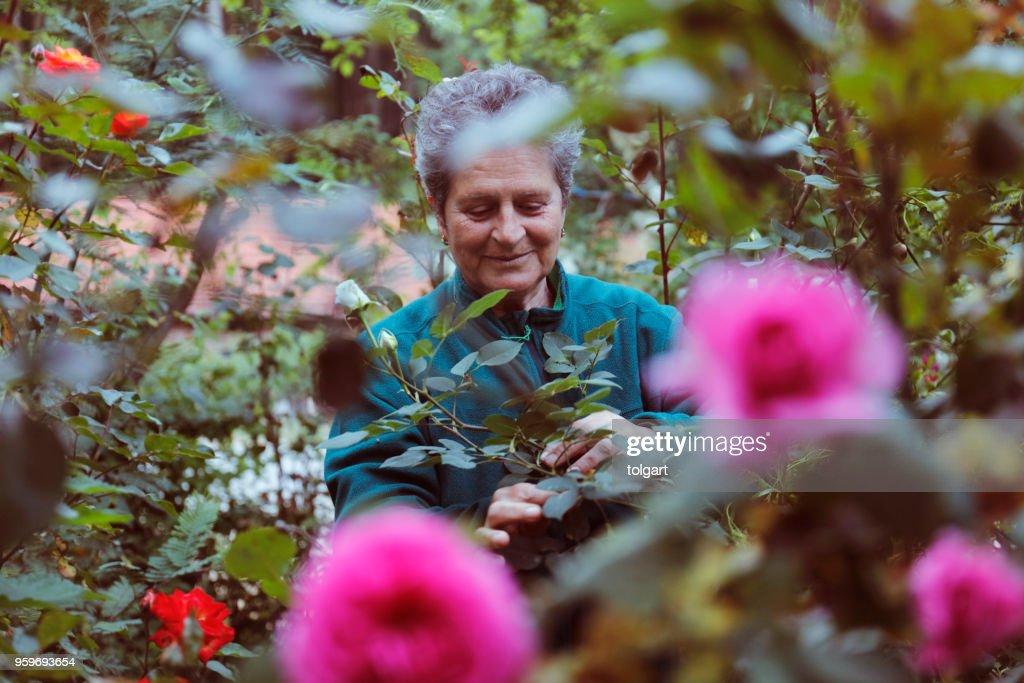 Frau mit Blumen im Garten : Stock-Foto