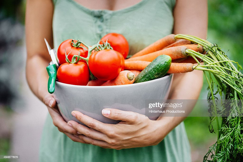 Woman With Fresh Harvest : Stock Photo