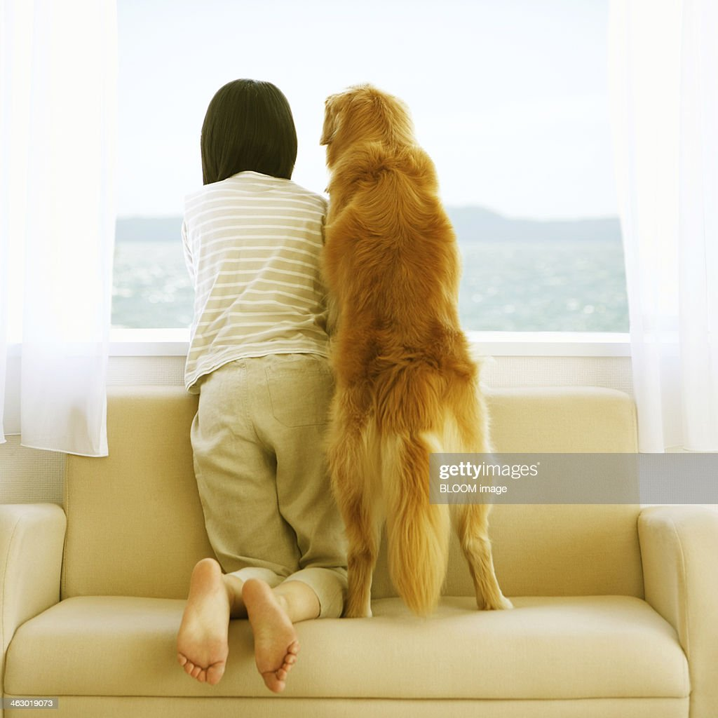 Woman With Golden Retriever On Couch Stock Photo Getty Images
