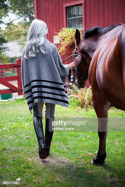 woman with gray hair walking her horse, back view. - riding boot stock pictures, royalty-free photos & images
