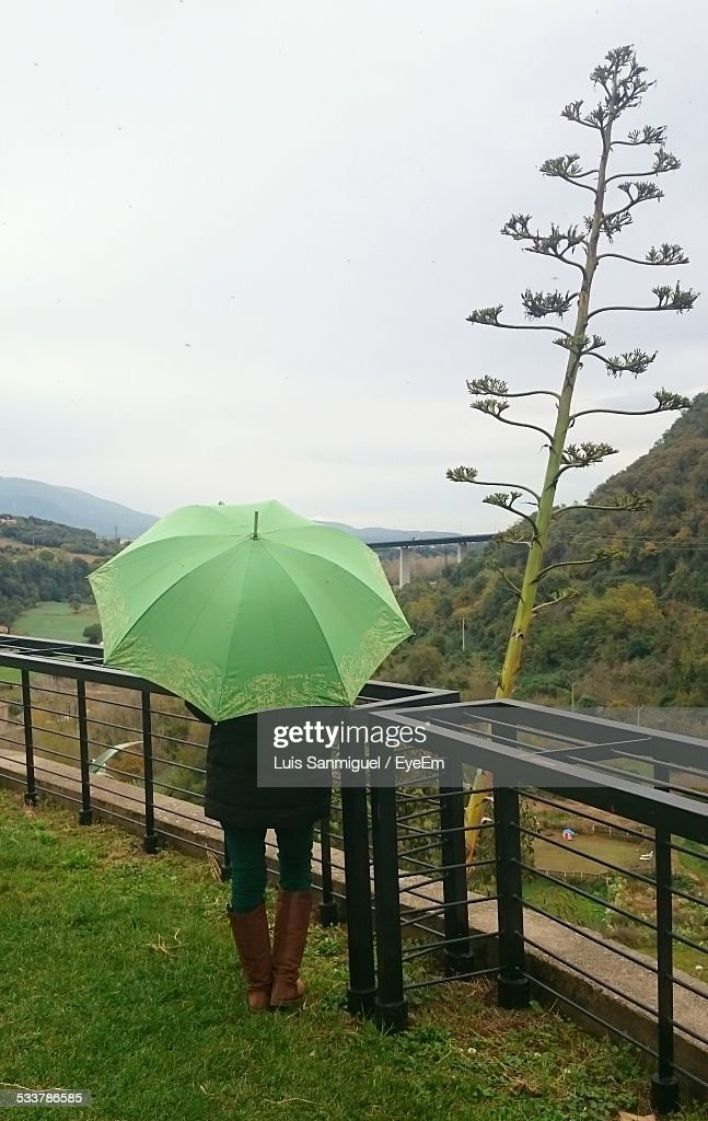 Woman With Green Umbrella Looking At Landscape : Foto stock