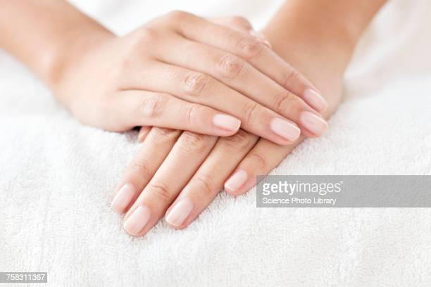 woman with hands resting on white towel - fingernail stock pictures, royalty-free photos & images
