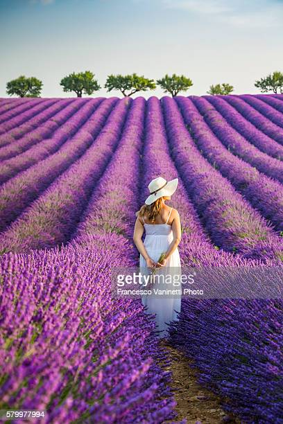 woman with hat in a lavender field. - purple hat stock pictures, royalty-free photos & images