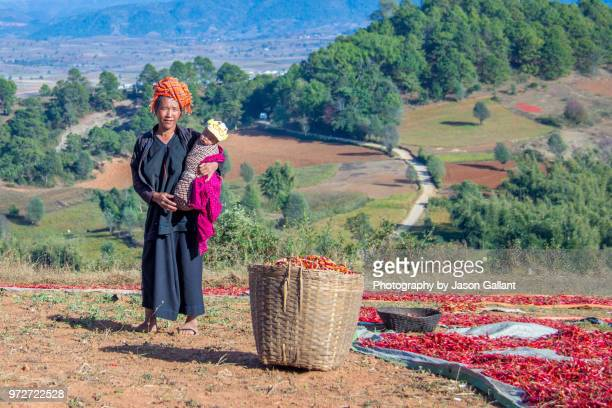 Woman with her baby on chili pepper farm - Hike from Kalaw to Inle Lake, Myanmar