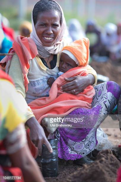 Woman with her baby working in agriculture in the Adi Halo region on August 24 2018 in Asmara Eritrea Women fill plastic bags with soil which is used...