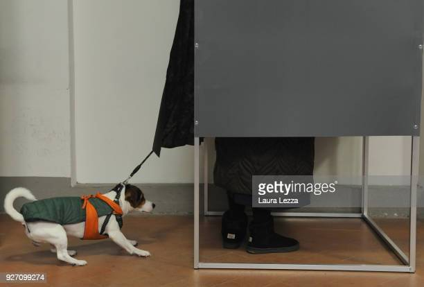 A woman with her dog casts her vote in a polling station on March 4 2018 in Florence Italy The economy and immigration are key factors in the 2018...