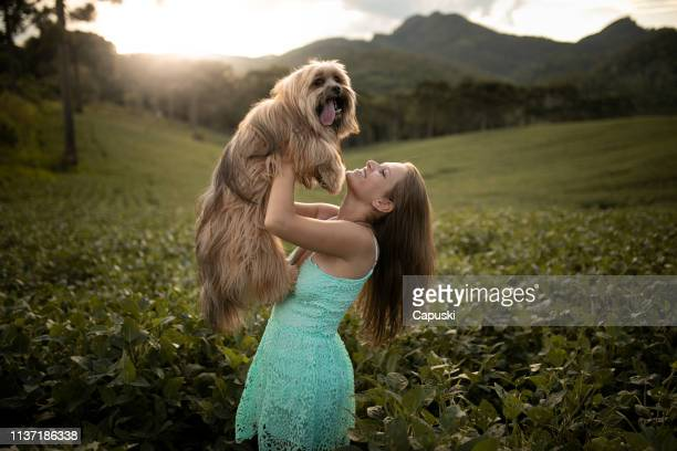 woman with her dog in nature - lhasa apso stock photos and pictures