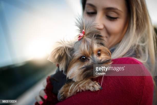 ペット友好的な屋上に彼女の犬を持つ女性 - ヨークシャー ストックフォトと画像
