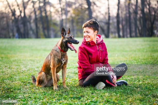femme avec son chien - berger belge malinois photos et images de collection