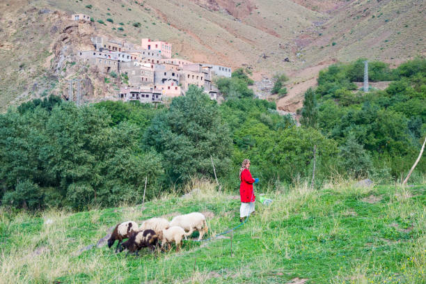 Woman with her goat herd