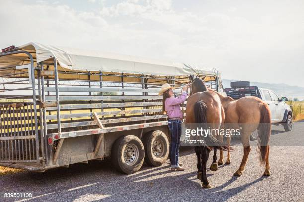 A woman with her horses, next to a horse trailer.
