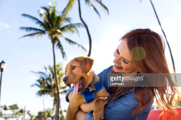 woman with his labrador puppy during a beautiful day at the park in miami beach. - miami beach stock pictures, royalty-free photos & images