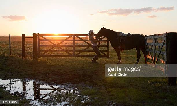 woman with horse leaving paddock during sunset