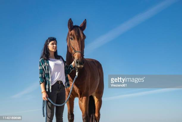 woman with horse under blue sky - 手綱 ストックフォトと画像