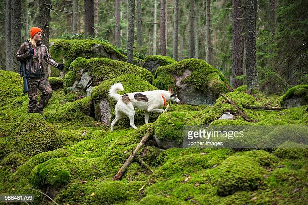 woman with hunting dog in forest - hunting dog stock pictures, royalty-free photos & images