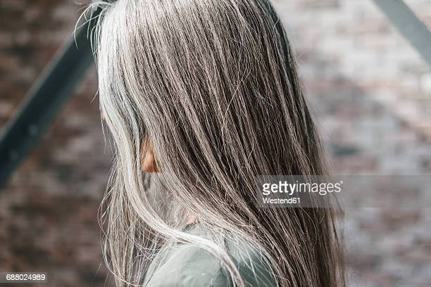 woman with long grey hair - capelli grigi foto e immagini stock
