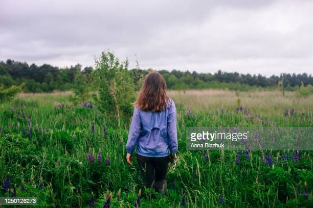 woman with lupine vibrant purple flowers. summer picture of wild flowers lupine, scenery of green meadow - ukraine landscape stock pictures, royalty-free photos & images
