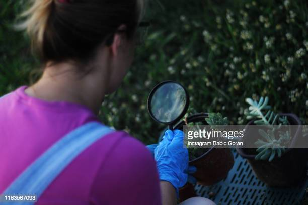woman with Magnifying glass in hand