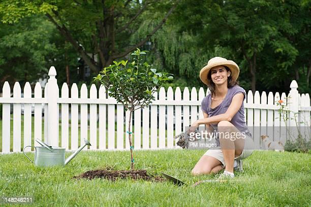 woman with newly planted tree - ひざまずく ストックフォトと画像