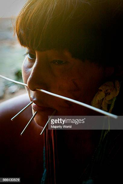A woman with pierced nose and chin from the ethnic Yanomami community The Yanomami are an ancient indigenous people living along the...
