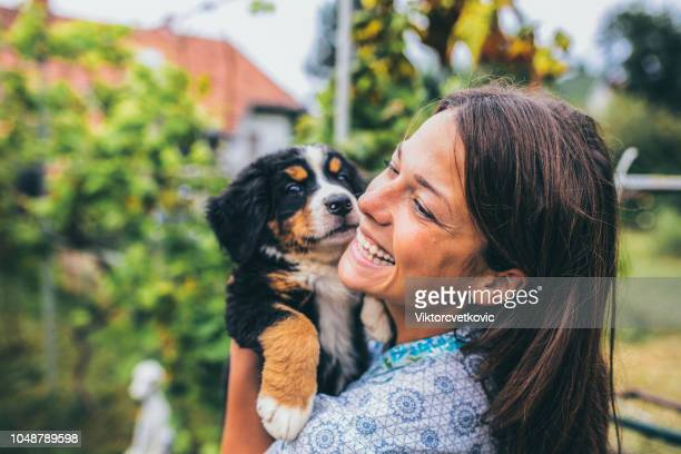 woman with puppies - pet adoption stock pictures, royalty-free photos & images