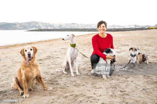 woman with red sweater looking at camera, sitting on the beach with four dogs - red shirt stock pictures, royalty-free photos & images