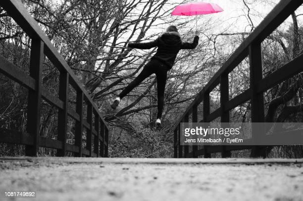 woman with umbrella jumping over footpath against bare trees - isolated color stock pictures, royalty-free photos & images