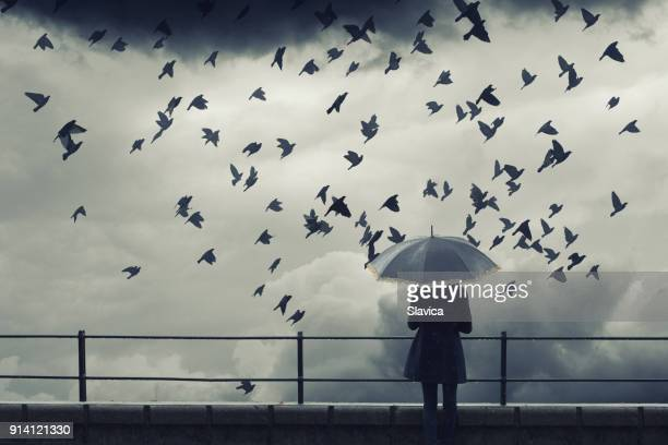 Woman with umbrella watching birds fly