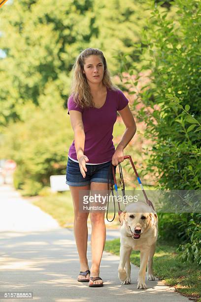 woman with visual impairment directing her service dog to turn - guide dog photos et images de collection