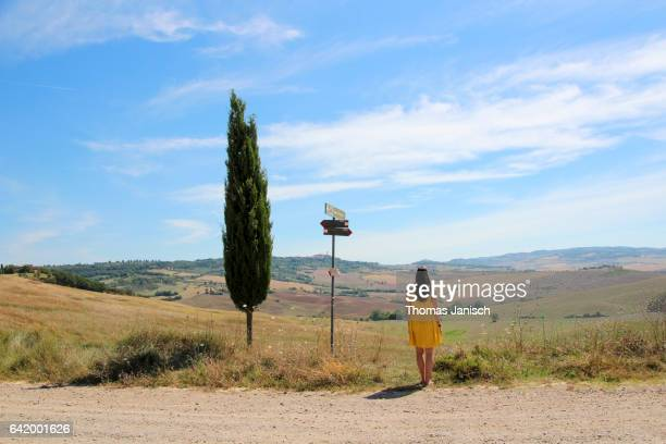 woman with yellow dress standing next to single cypress tree and looking over the scenic tuscany landscape of val d'orcia - cipresso foto e immagini stock