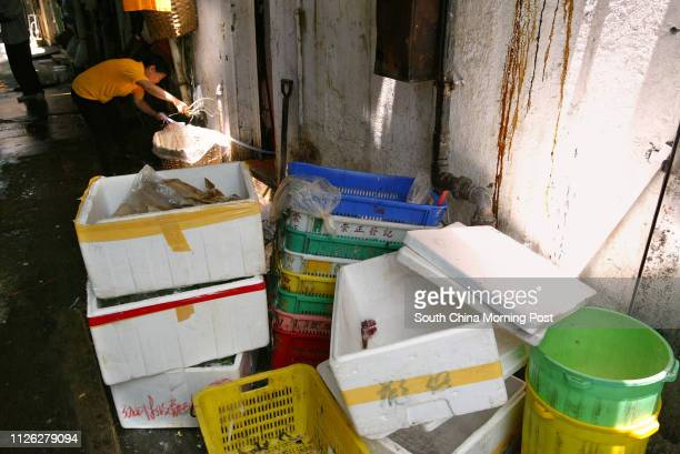 A woman working at a back alley in Mongkok Team Clean has proposed to install closedcircuit television cameras in hygiene black spots in the district...