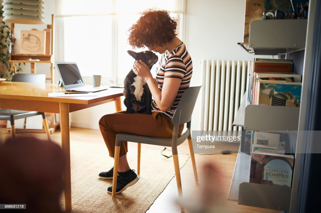Woman working at home doing home finances. : Stock Photo