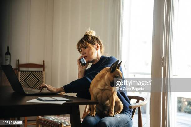 woman working at home with dog - makeshift stock pictures, royalty-free photos & images
