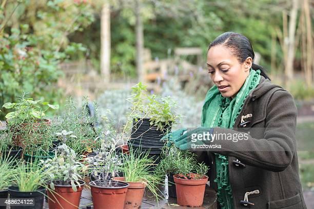 Frau arbeitet in einem städtischen Garten (London, GB)